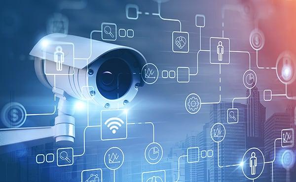 IP surveillance camera network